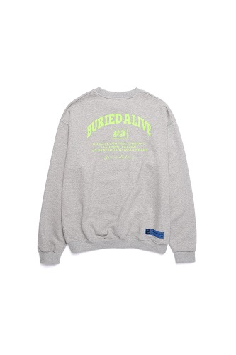 BA A-TYPE SWEATSHIRTS GRAY